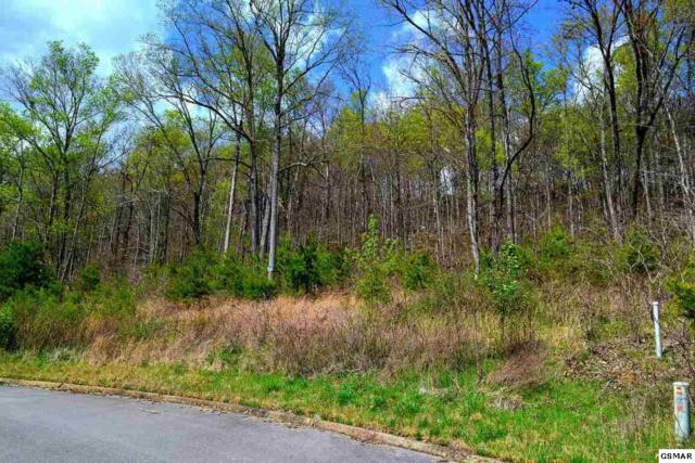 Lot 40 Bobbie Jean Ln, Seymour, TN 37865 (#213460) :: Colonial Real Estate