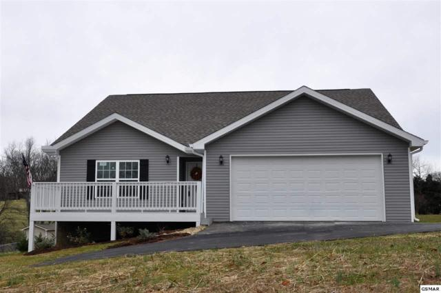 1160 South Fork Drive, Sevierville, TN 37862 (#213471) :: Colonial Real Estate