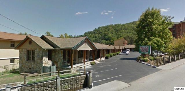 313 Baskins Creek Road, Gatlinburg, TN 37738 (#213475) :: Colonial Real Estate
