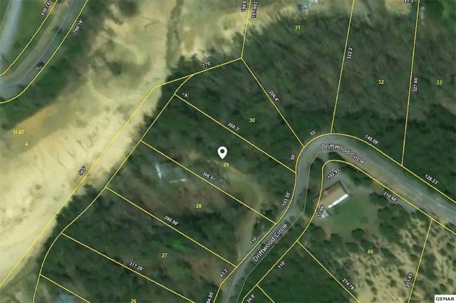 Lot 29 Driftwood Circle, Sevierville, TN 37876 (#213477) :: The Terrell Team