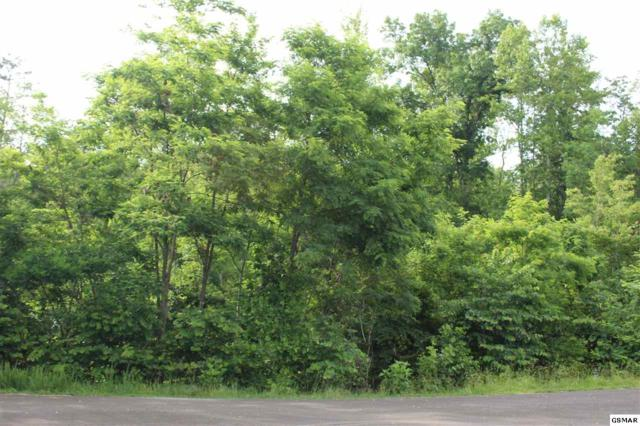 Lot #389 Graphite Court Lot #389 Graphi, New Tazewell, TN 37825 (#213479) :: Billy Houston Group
