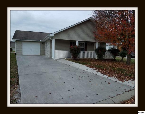 2553 Bay Meadows Way, Sevierville, TN 37876 (#213483) :: Colonial Real Estate