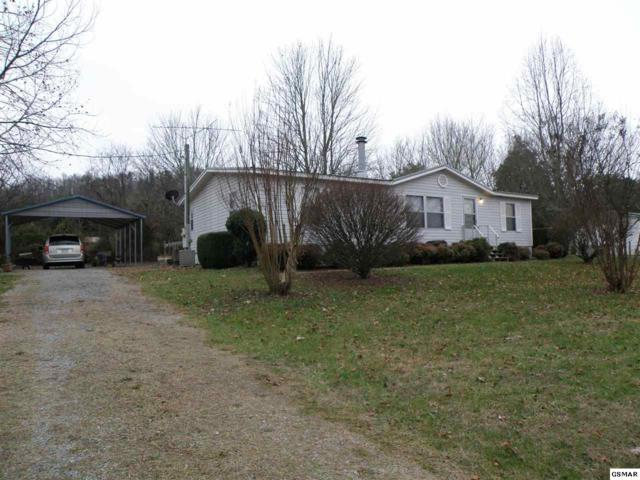 420 Brookside Lane, Kodak, TN 37764 (#213514) :: SMOKY's Real Estate LLC