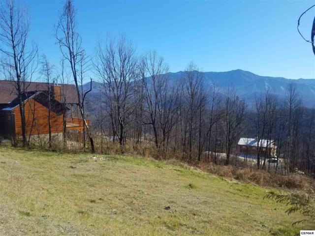 715 Bear Walk Way, Gatlinburg, TN 37738 (#213526) :: The Terrell Team