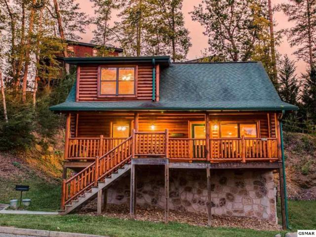 1664 Mountain Lodge Way Chipmonk Chase, Sevierville, TN 37876 (#213531) :: The Terrell Team