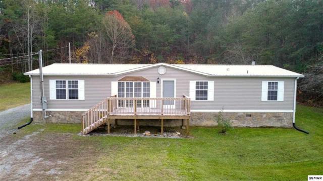 1215 Primrose Way, Newport, TN 37821 (#213538) :: SMOKY's Real Estate LLC