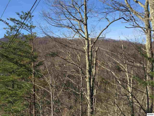 Parcel 25 Mathis Hollow Rd, Gatlinburg, TN 37738 (#213593) :: The Terrell Team