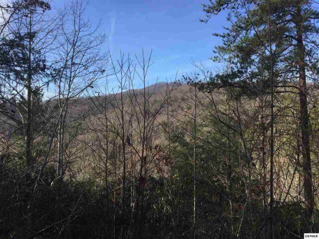 Parcel 26 Mathis Hollow Rd, Gatlinburg, TN 37738 (#213594) :: SMOKY's Real Estate LLC