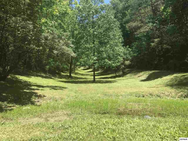 7.29 Acres Rush Branch Rd Just Passed She, Pigeon Forge, TN 38763 (#213684) :: Billy Houston Group