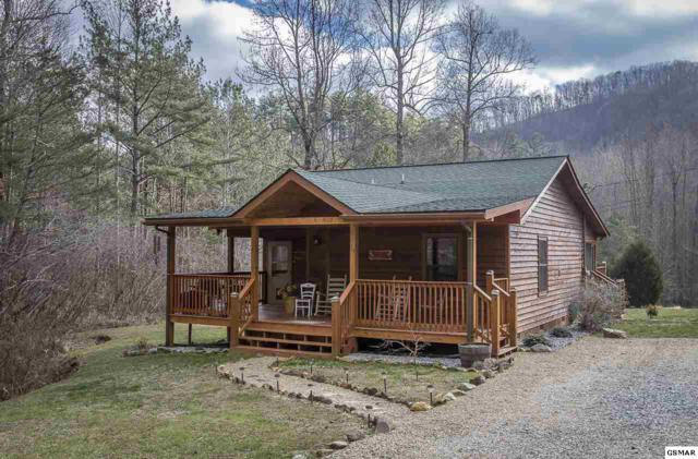 3945 Millers Ridge Way, Sevierville, TN 37862 (#213737) :: Colonial Real Estate