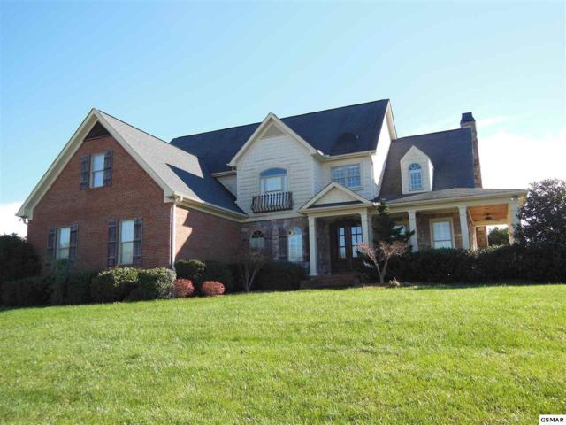 1460 Landmark Blvd, Sevierville, TN 37862 (#213758) :: Four Seasons Realty, Inc
