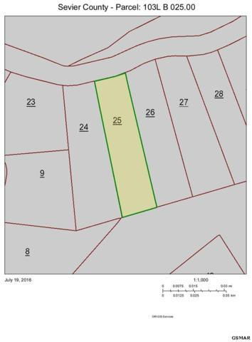 Lot 25 Coopers Hawk Way, Sevierville, TN 37862 (#213787) :: Colonial Real Estate