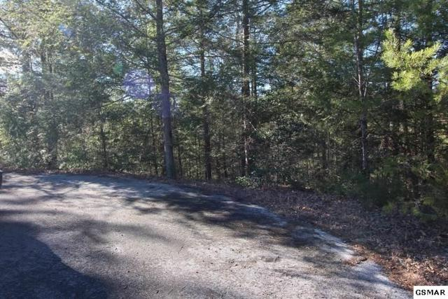 Lot 11-R Dogwood Cove Way, Sevierville, TN 37876 (#213835) :: Colonial Real Estate