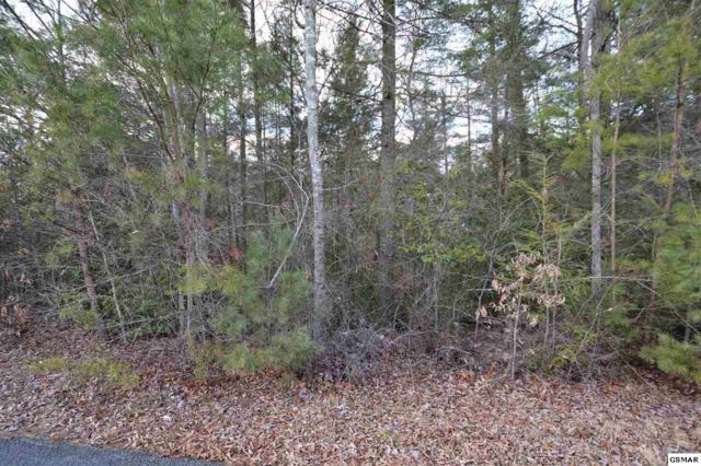 Lot 36 Possum Cove Way, Sevierville, TN 37862 (#213838) :: Colonial Real Estate
