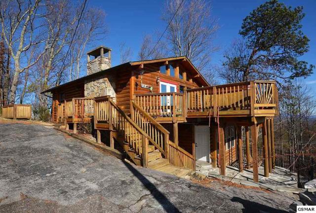 1166 Ski View Drive, Gatlinburg, TN 37738 (#213840) :: Colonial Real Estate