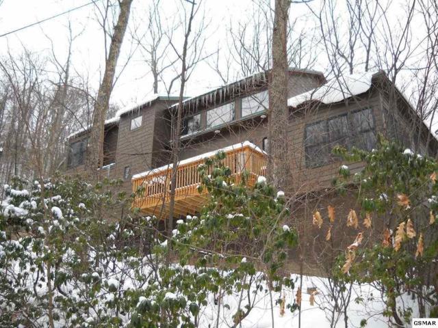 2004 St Moritz Drive, Gatlinburg, TN 37738 (#213841) :: Colonial Real Estate