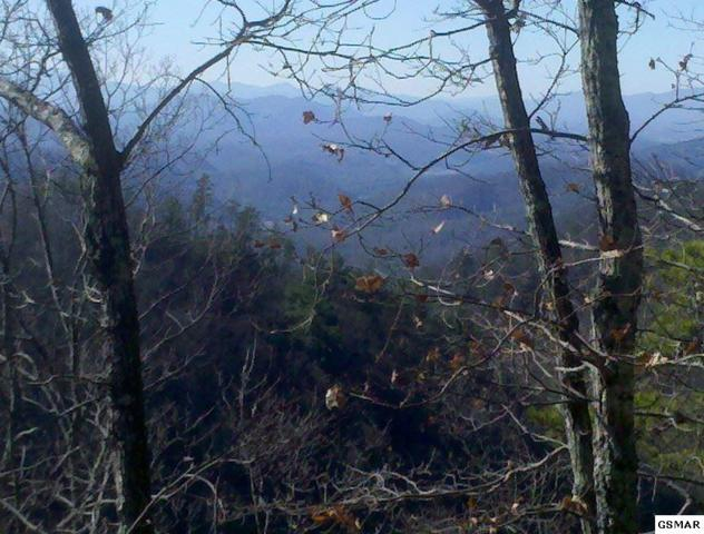 Red Maple Ln- Lot 19,20,21, Sevierville, TN 37876 (#213881) :: Billy Houston Group