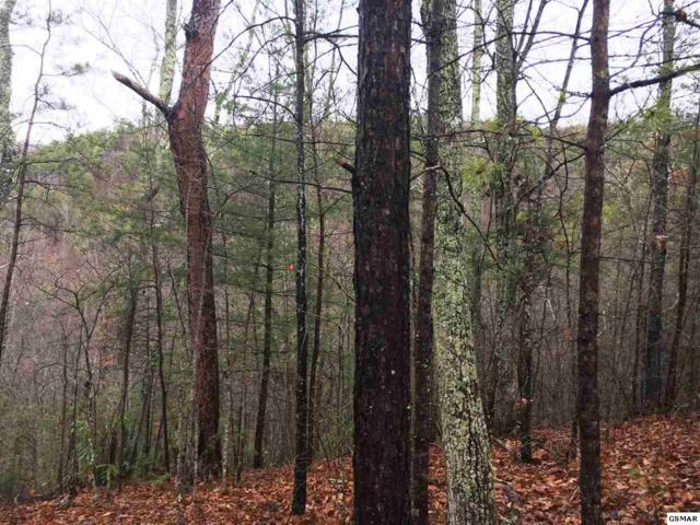 Lot 5E Stackstone Road, Sevierville, TN 37862 (#213894) :: Colonial Real Estate