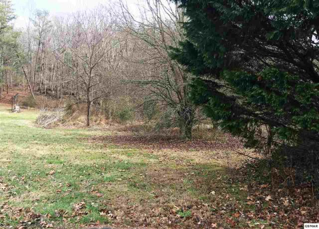 Lot 10 Boardly Hills Blvd., Sevierville, TN 37862 (#213895) :: Billy Houston Group