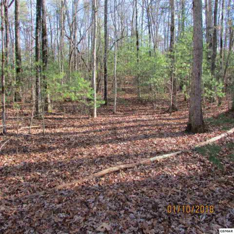 S Peterson Rd, Tallassee, TN 37878 (#213897) :: Colonial Real Estate