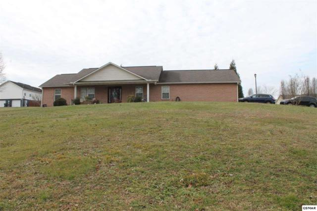 1571 Turtle Dove Trl, Sevierville, TN 37862 (#213905) :: Colonial Real Estate