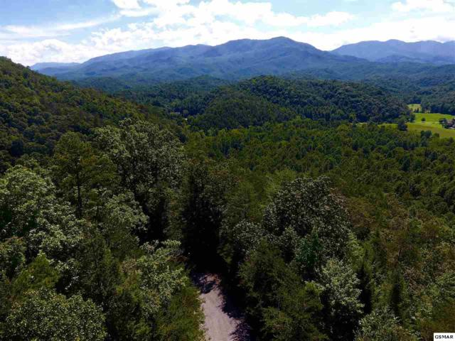 Lot 35 Riversong Way, Sevierville, TN 37876 (#213906) :: The Terrell Team