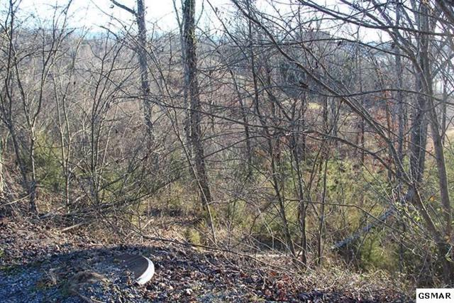 Lot 59 Stone Bridge Dr, Dandridge, TN 37725 (#213914) :: Billy Houston Group