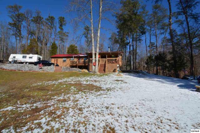 243 Arrowhead Mountain Way, Sevierville, TN 37876 (#213931) :: Billy Houston Group