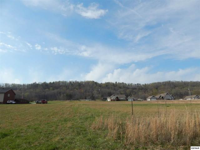 Creswell Rd - Lot 49, Seymour, TN 37865 (#213954) :: Coldwell Banker Wallace & Wallace, Realtors
