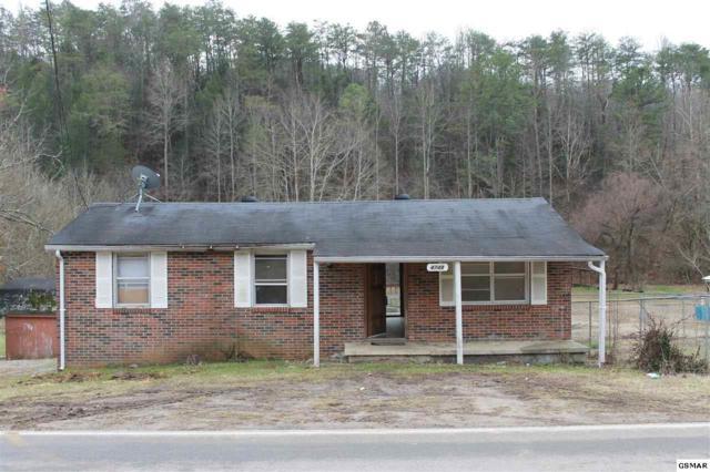 4748 Jones Cove Rd, Cosby, TN 37722 (#213961) :: Colonial Real Estate