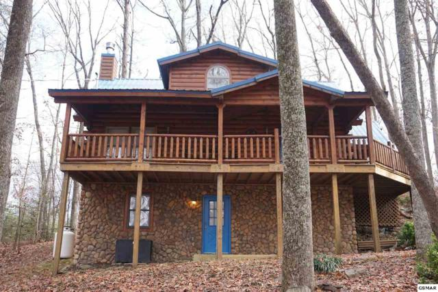2164 Red Bud Road, Sevierville, TN 37876 (#213962) :: Colonial Real Estate