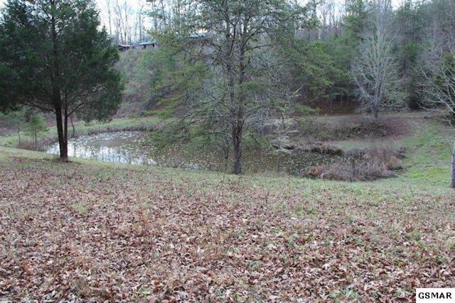 Lot 2-R Laurel Ln, Sevierville, TN 37862 (#213990) :: Billy Houston Group