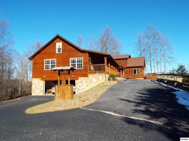 117 Big Tree Road 115 Big Tree Ro, Cosby, TN 37722 (#213992) :: Four Seasons Realty, Inc