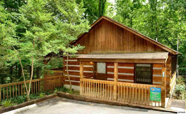 619 Red Bud Lane Three Cabins, Gatlinburg, TN 37738 (#214006) :: Four Seasons Realty, Inc