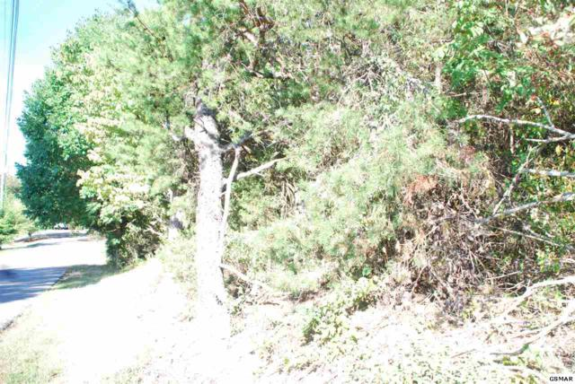 Lot 18 Easy Street, Pigeon Forge, TN 37862 (#214009) :: Billy Houston Group