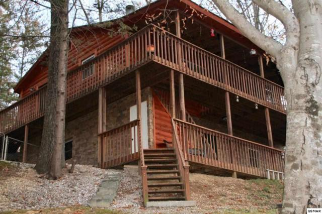 3054 Winding Way, Cosby, TN 37722 (#214011) :: Colonial Real Estate