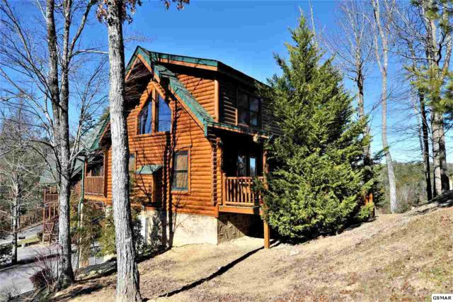 1665 Mountain Lodge Way, Sevierville, TN 37876 (#214046) :: Colonial Real Estate