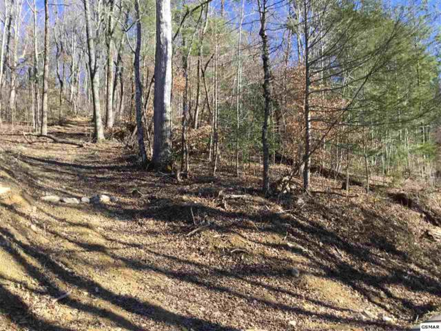 Lot 1 Clabo Mountain Way, Sevierville, TN 37862 (#214057) :: Billy Houston Group