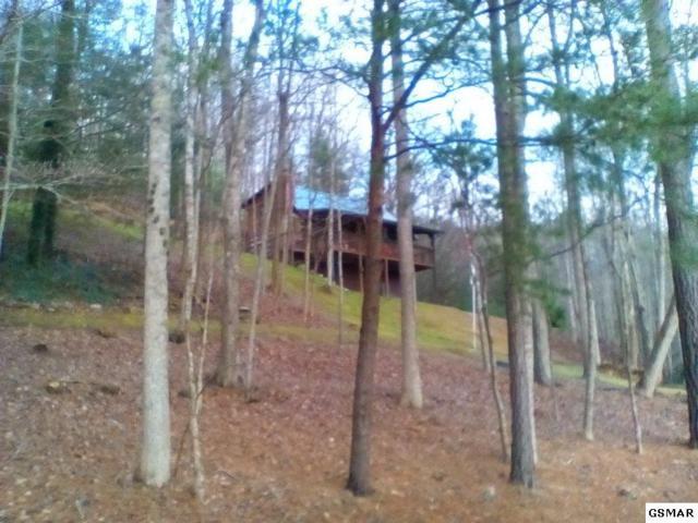 2688 Possum Ridge, Sevierville, TN 37862 (#214084) :: Colonial Real Estate