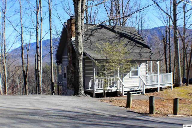 536 Deer Path Ln, Gatlinburg, TN 37738 (#214087) :: Billy Houston Group