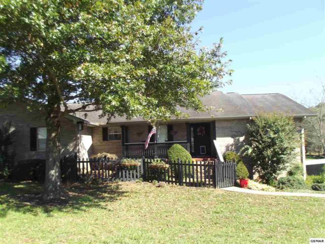 1505 Haley Lynn, Sevierville, TN 37862 (#214104) :: Colonial Real Estate