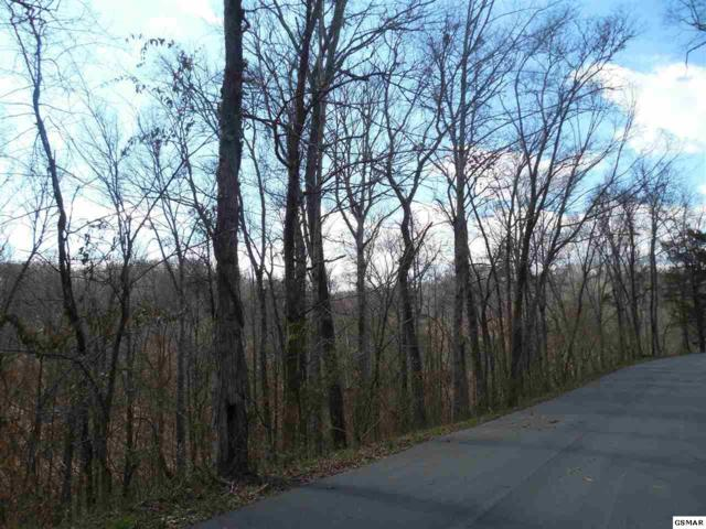 Lot 2 King Estates Rd, Sevierville, TN 37876 (#214107) :: Billy Houston Group