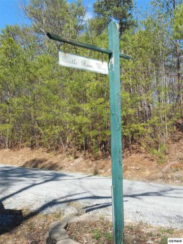 Lot 18 Castle Rise Way Wears Valley Rd, Sevierville, TN 37862 (#214108) :: Billy Houston Group
