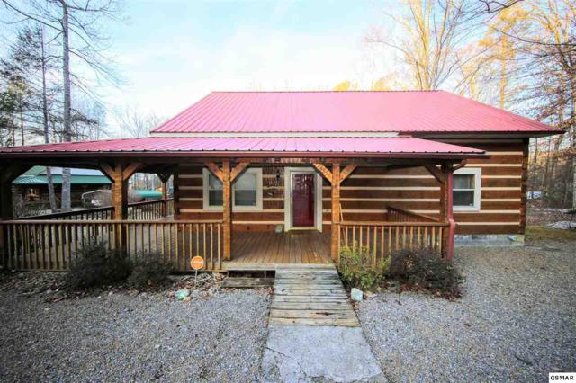 3362 Laurelwood Rd, Cosby, TN 37722 (#214162) :: Colonial Real Estate