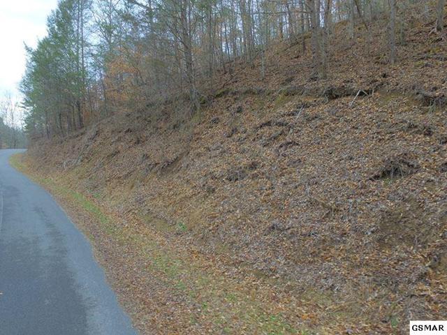Lot 17 Bear Mountain Lane, Sevierville, TN 37876 (#214219) :: Billy Houston Group