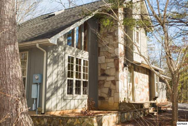 199 Cold Springs Trace, Townsend, TN 37882 (#214221) :: Four Seasons Realty, Inc