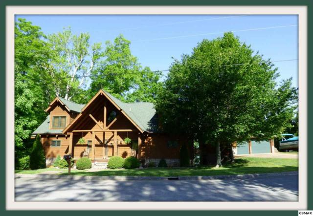 1537 Persimmon Orchard Dr., Dandridge, TN 37725 (#214228) :: Colonial Real Estate