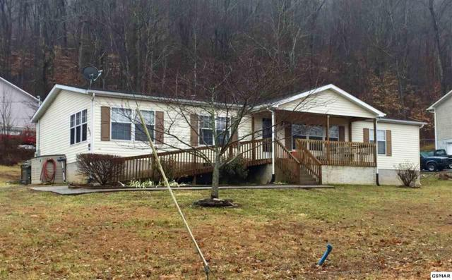 558 Blueberry Way, Newport, TN 37821 (#214273) :: Colonial Real Estate