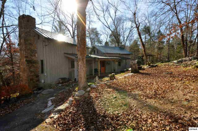 281 Laurel Road, Townsend, TN 37882 (#214285) :: Colonial Real Estate