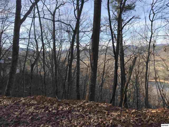 3689 Line Springs, Sevierville, TN 37862 (#214317) :: Colonial Real Estate